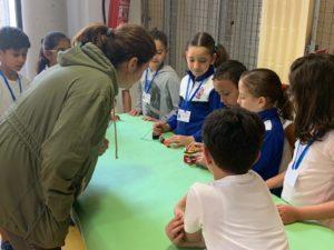 Alumnos muestran sus proyectos de máquinas simples
